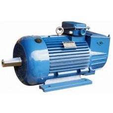 Электродвигатель 5МТН-011-6