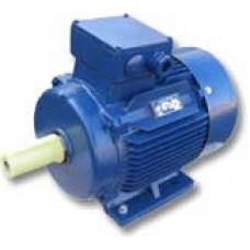 Электродвигатель 5АИ 100 L2 (5АИ100L2)